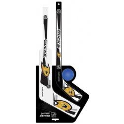Kit NHL deux crosses et une balle - Promoglace Hockey
